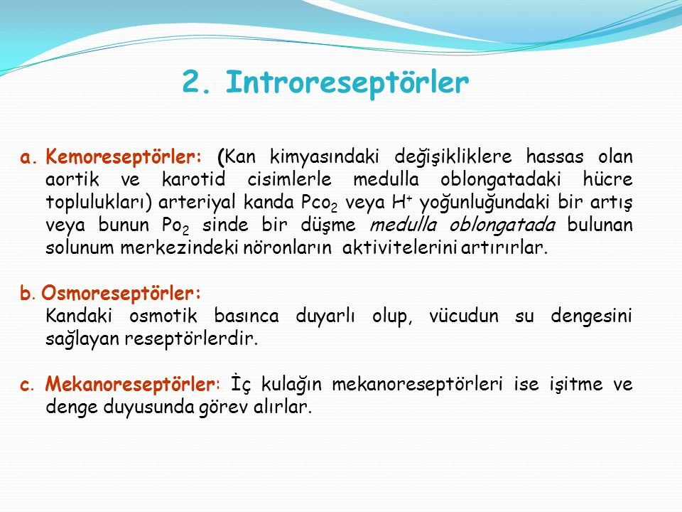 2. Introreseptörler