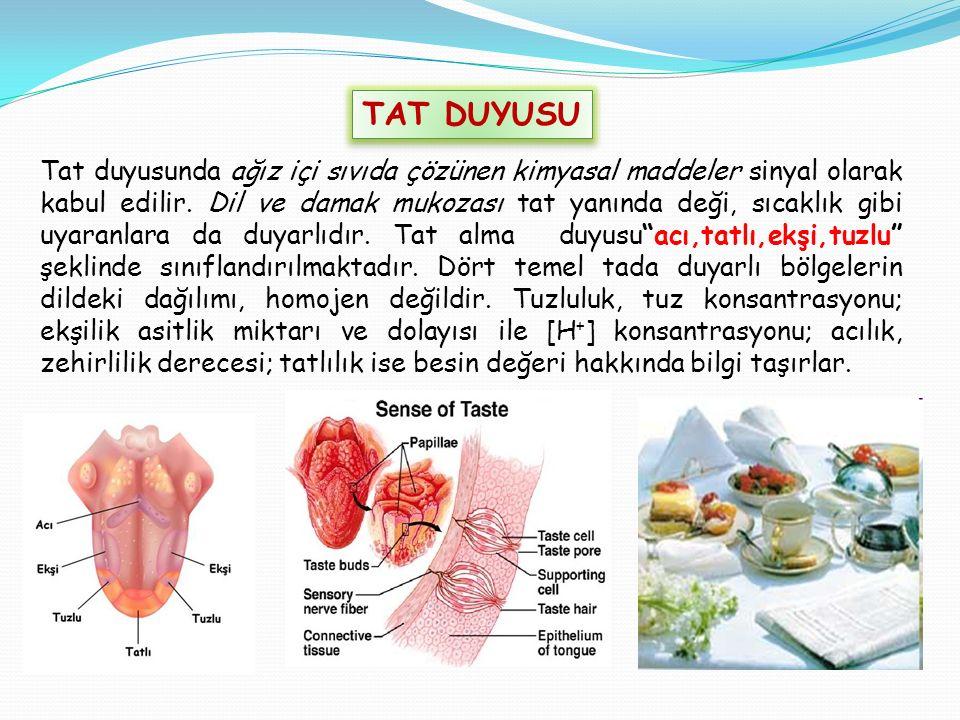 TAT DUYUSU