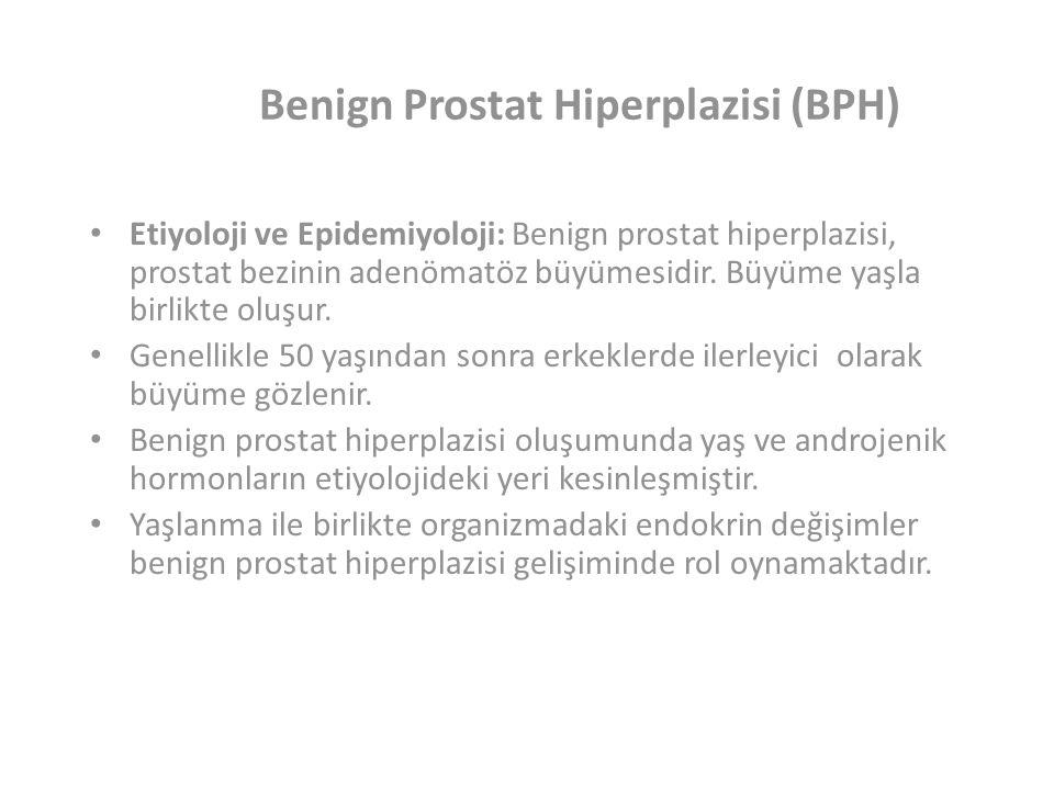 Benign Prostat Hiperplazisi (BPH)