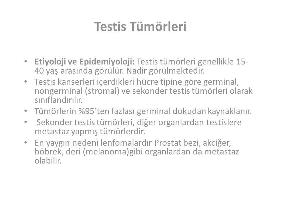 Testis Tümörleri Etiyoloji ve Epidemiyoloji: Testis tümörleri genellikle 15-40 yaş arasında görülür. Nadir görülmektedir.