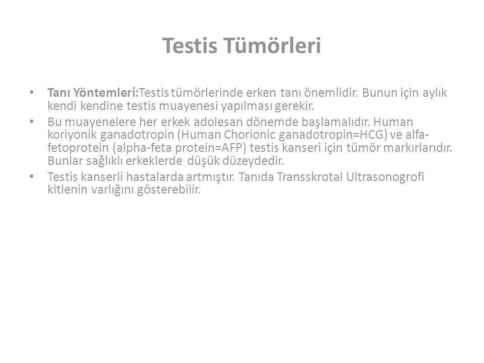 Testis Tümörleri Tanı Yöntemleri:Testis tümörlerinde erken tanı önemlidir. Bunun için aylık kendi kendine testis muayenesi yapılması gerekir.