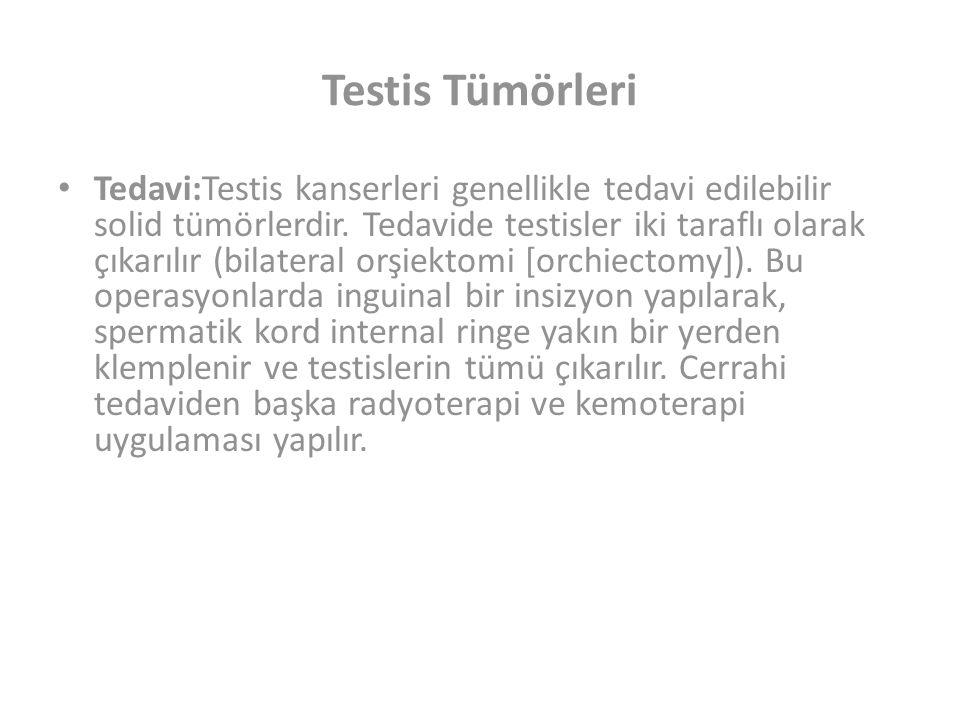 Testis Tümörleri