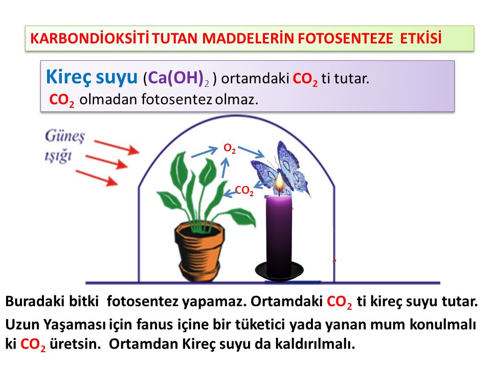 Kireç suyu (Ca(OH)2 ) ortamdaki CO2 ti tutar.