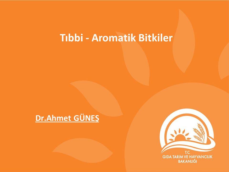 Tıbbi - Aromatik Bitkiler