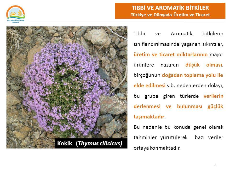 TIBBİ VE AROMATİK BİTKİLER Türkiye ve Dünyada Üretim ve Ticaret