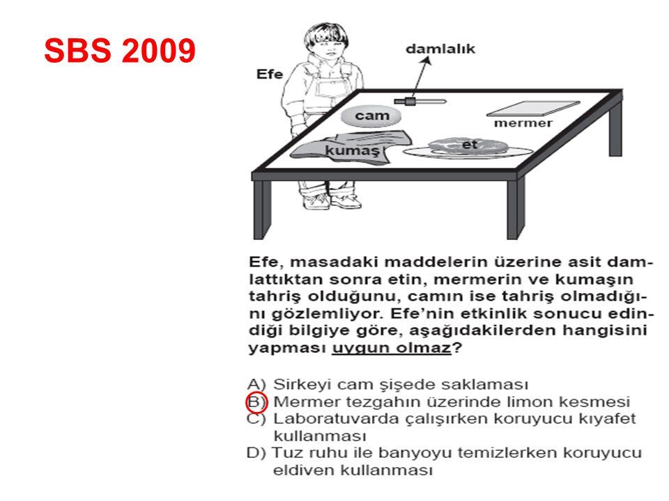 SBS 2009