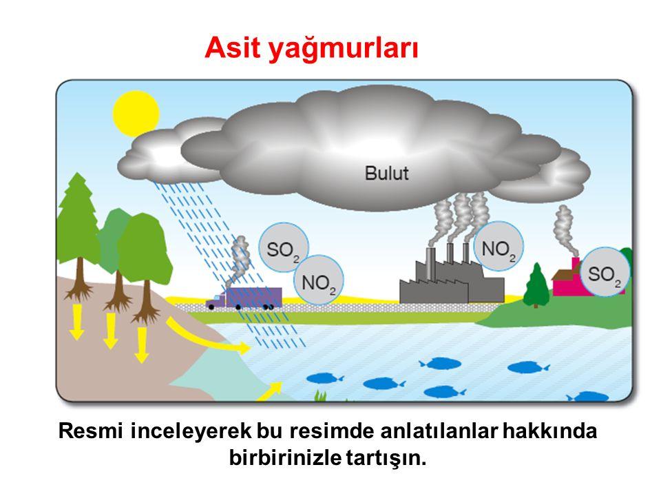 Asit yağmurları Resmi inceleyerek bu resimde anlatılanlar hakkında birbirinizle tartışın.