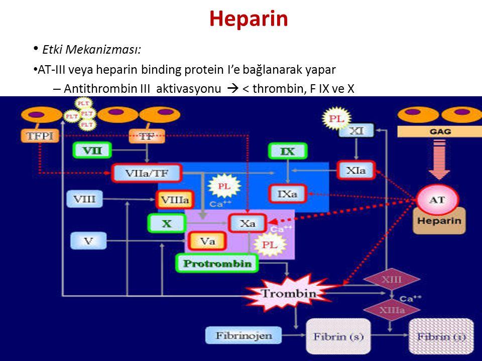 Heparin Etki Mekanizması: