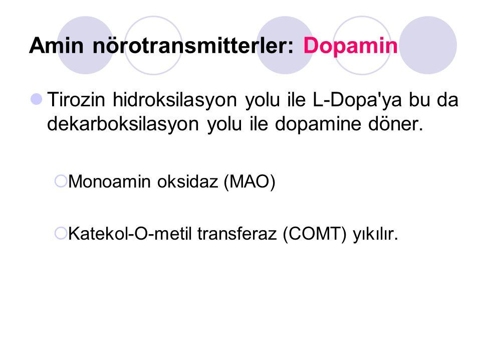 Amin nörotransmitterler: Dopamin