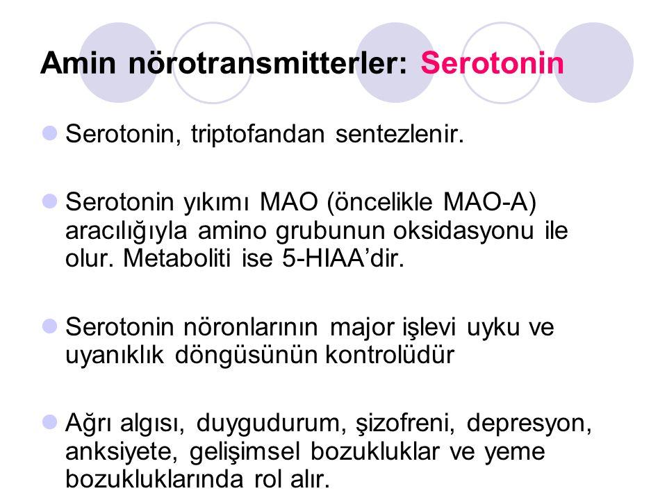 Amin nörotransmitterler: Serotonin