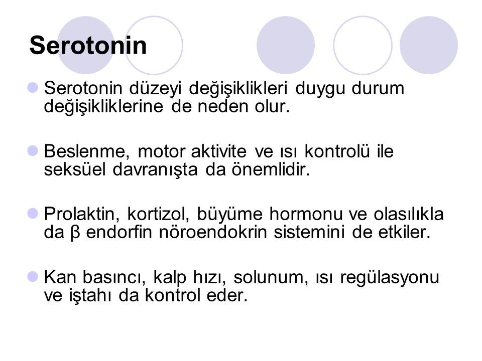 Serotonin Serotonin düzeyi değişiklikleri duygu durum değişikliklerine de neden olur.