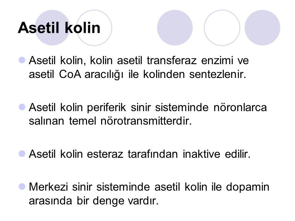 Asetil kolin Asetil kolin, kolin asetil transferaz enzimi ve asetil CoA aracılığı ile kolinden sentezlenir.