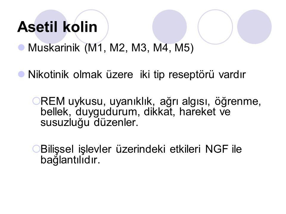 Asetil kolin Muskarinik (M1, M2, M3, M4, M5)