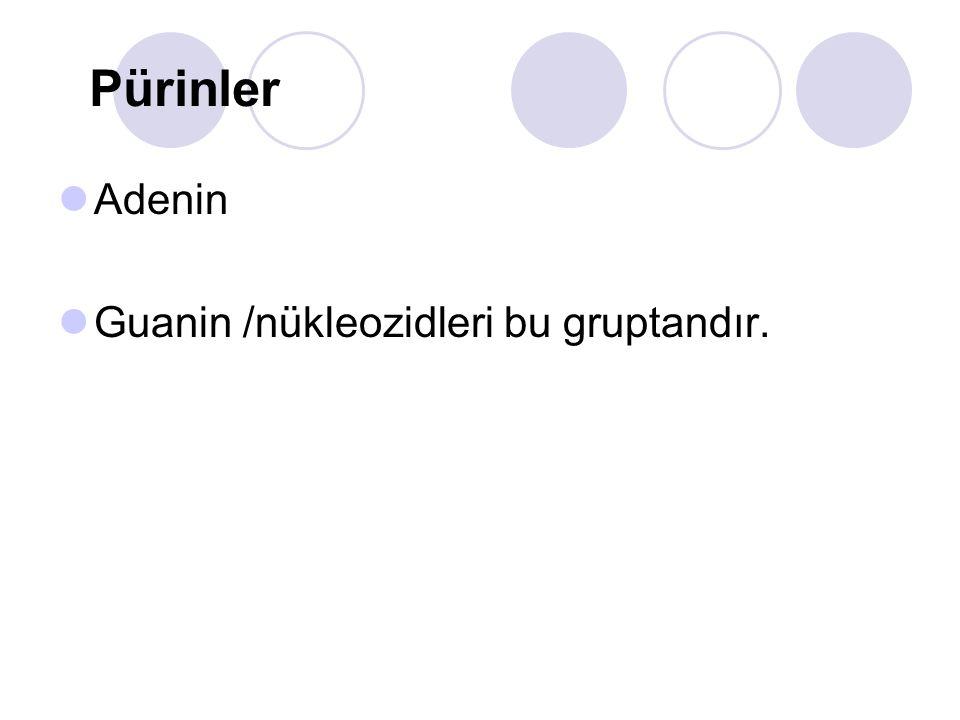Pürinler Adenin Guanin /nükleozidleri bu gruptandır.