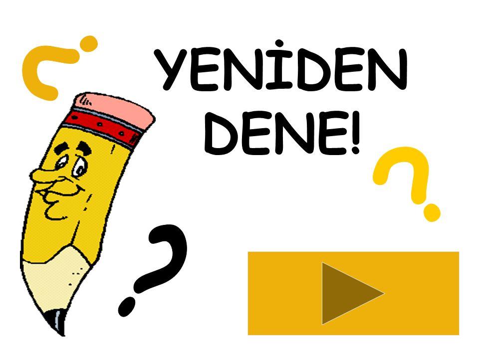 YENİDEN DENE! BİR & BİL