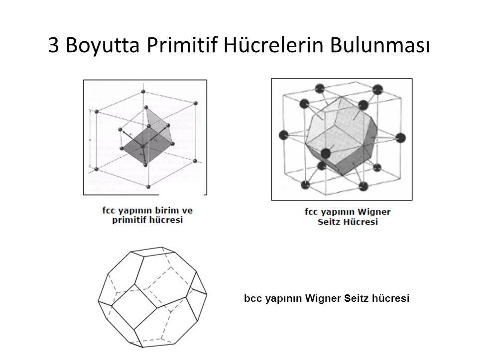 3 Boyutta Primitif Hücrelerin Bulunması