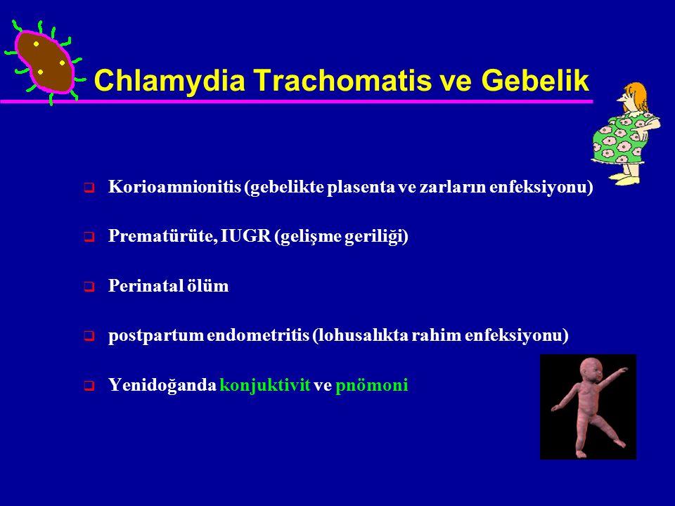 Chlamydia Trachomatis ve Gebelik