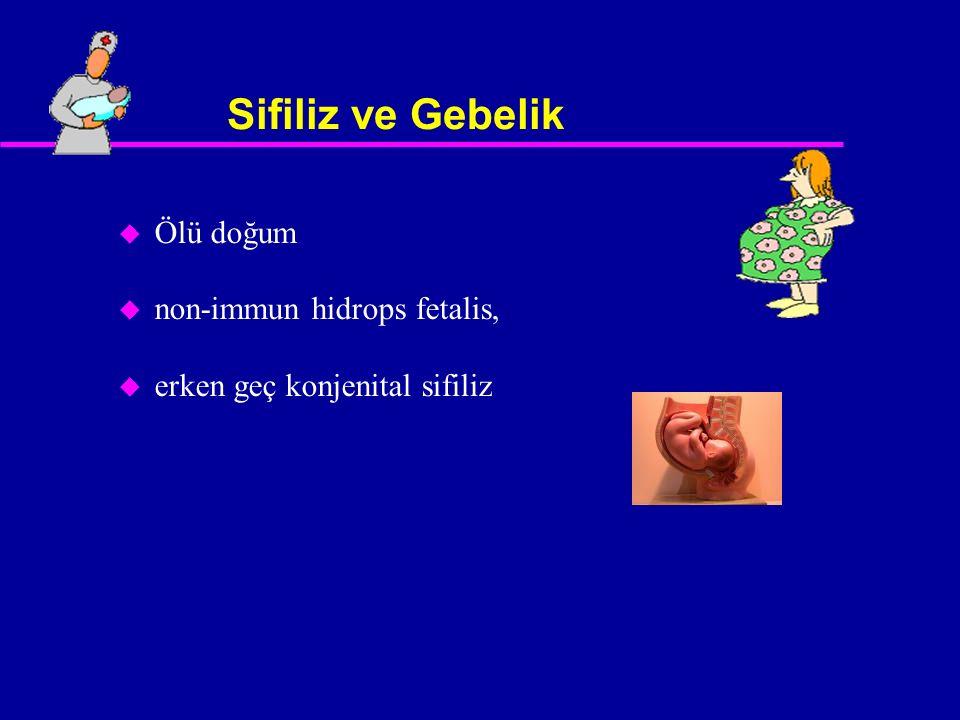 Sifiliz ve Gebelik Ölü doğum non-immun hidrops fetalis,