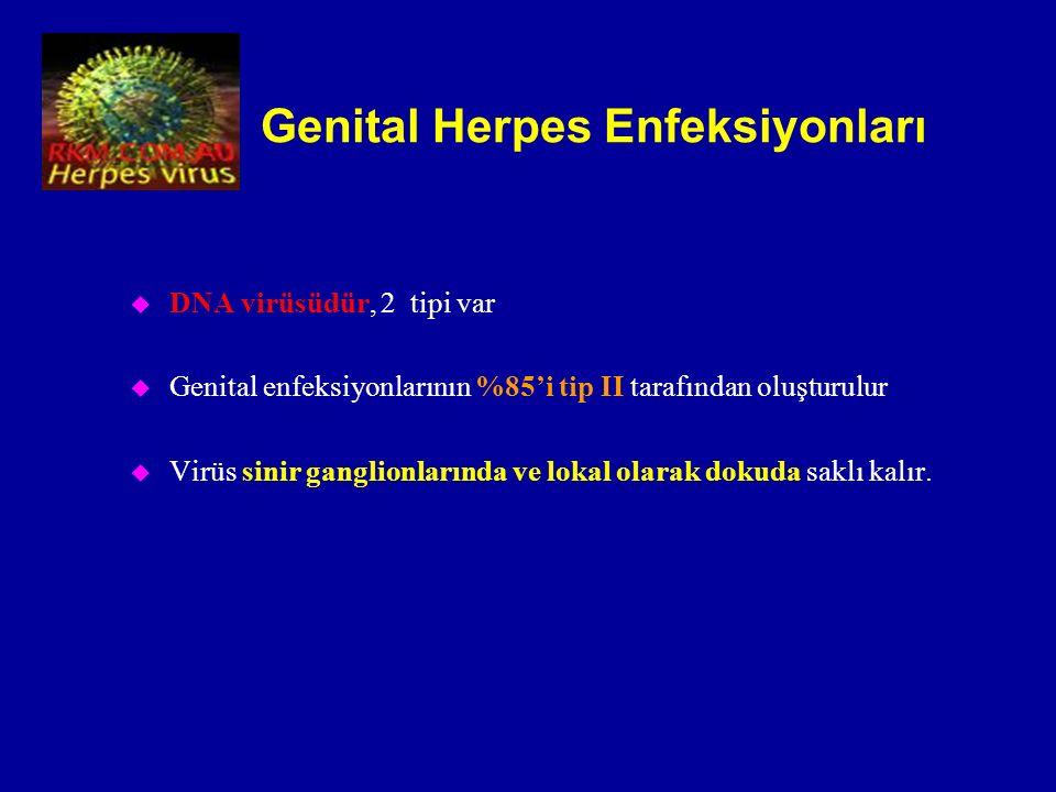 Genital Herpes Enfeksiyonları