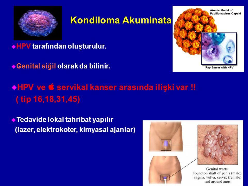 Kondiloma Akuminata HPV ve  servikal kanser arasında ilişki var !!