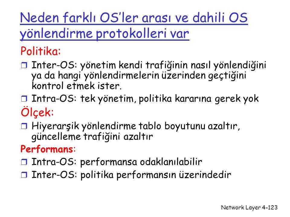 Neden farklı OS'ler arası ve dahili OS yönlendirme protokolleri var