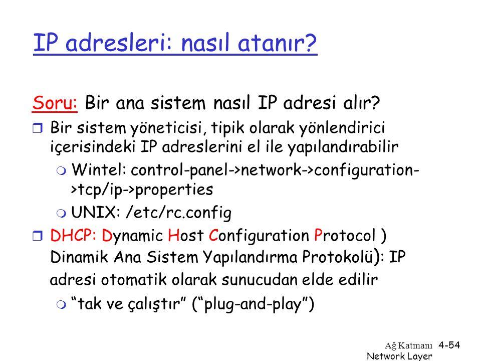 IP adresleri: nasıl atanır