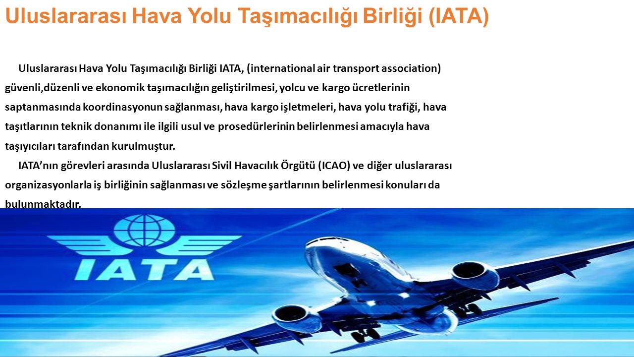 Uluslararası Hava Yolu Taşımacılığı Birliği (IATA)