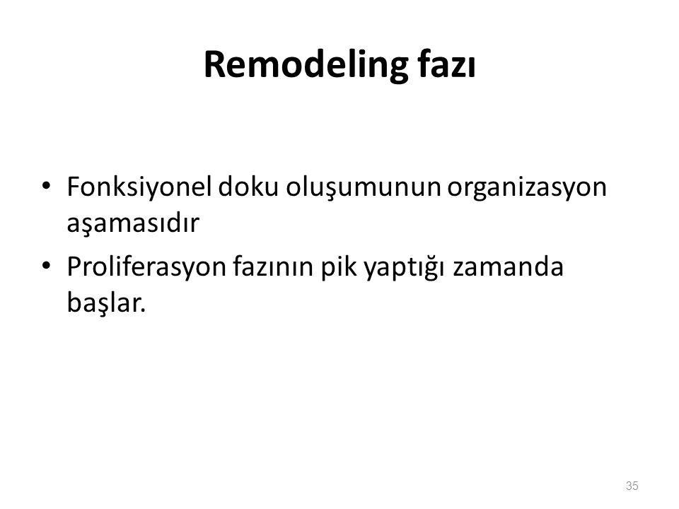 Remodeling fazı Fonksiyonel doku oluşumunun organizasyon aşamasıdır