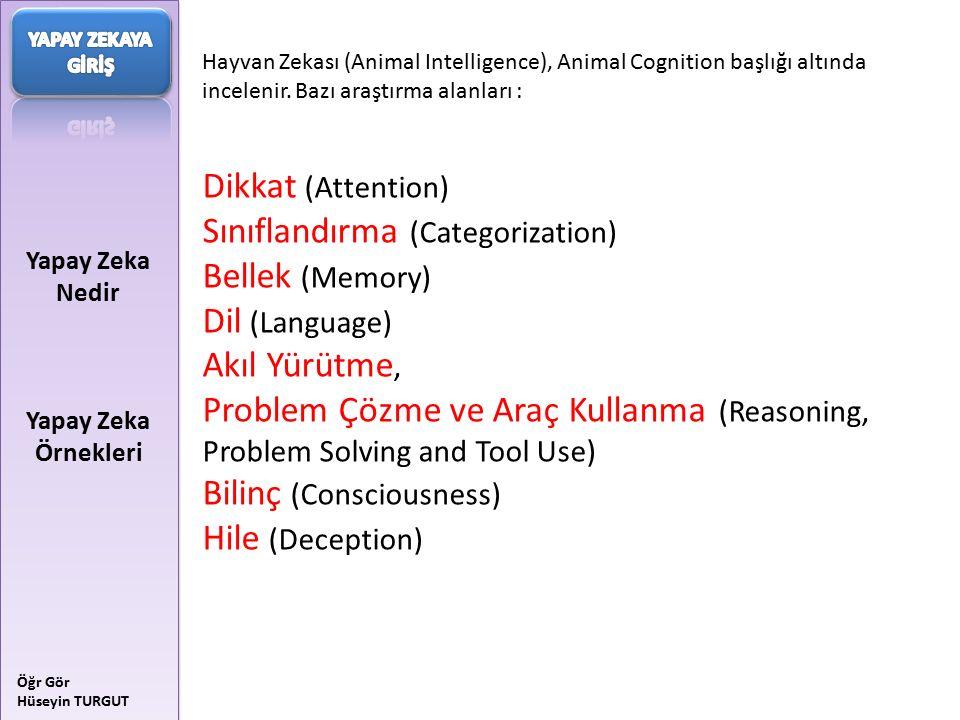 Sınıflandırma (Categorization) Bellek (Memory) Dil (Language)