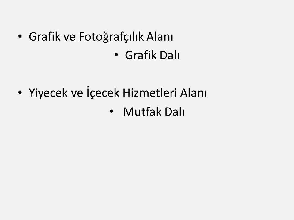 Grafik ve Fotoğrafçılık Alanı