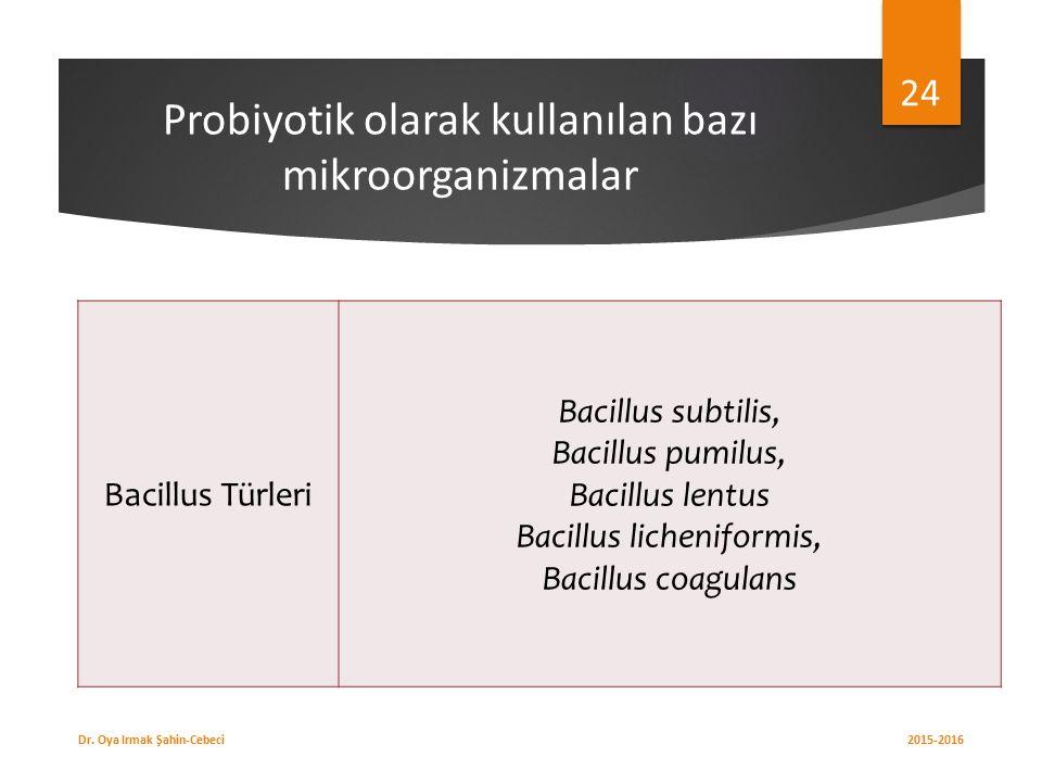 Probiyotik olarak kullanılan bazı mikroorganizmalar