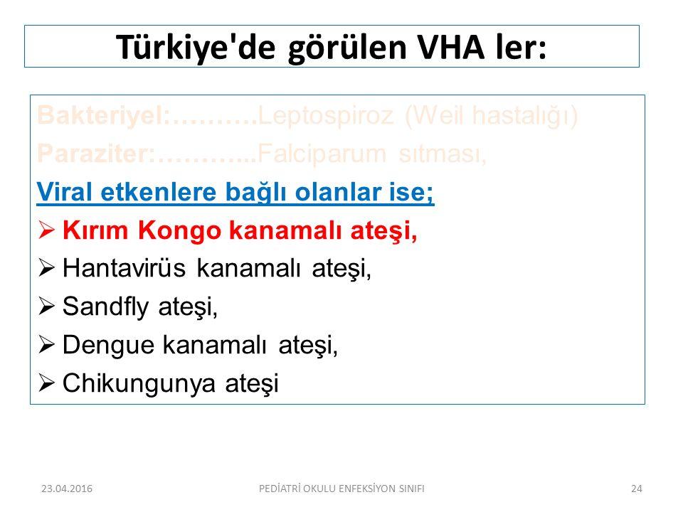 Türkiye de görülen VHA ler: