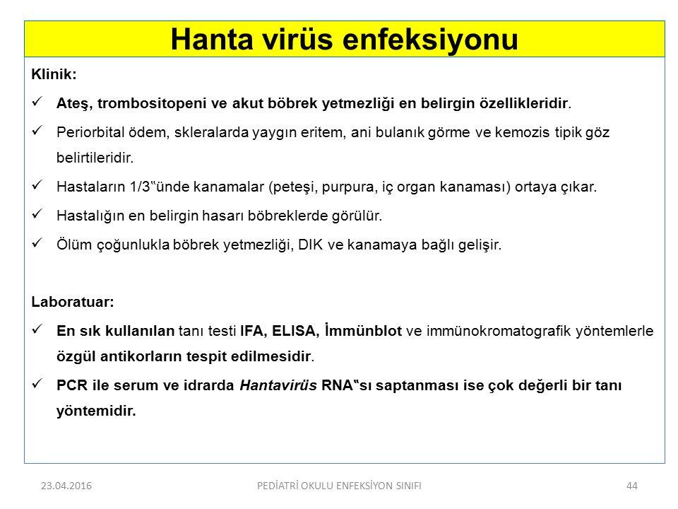 Hanta virüs enfeksiyonu