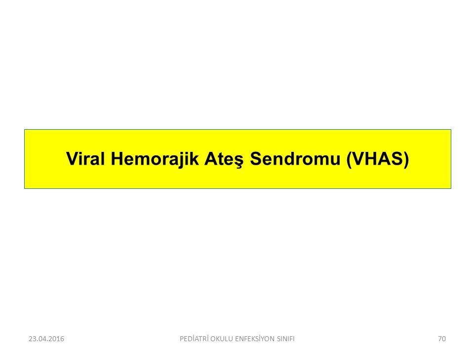 Viral Hemorajik Ateş Sendromu (VHAS)