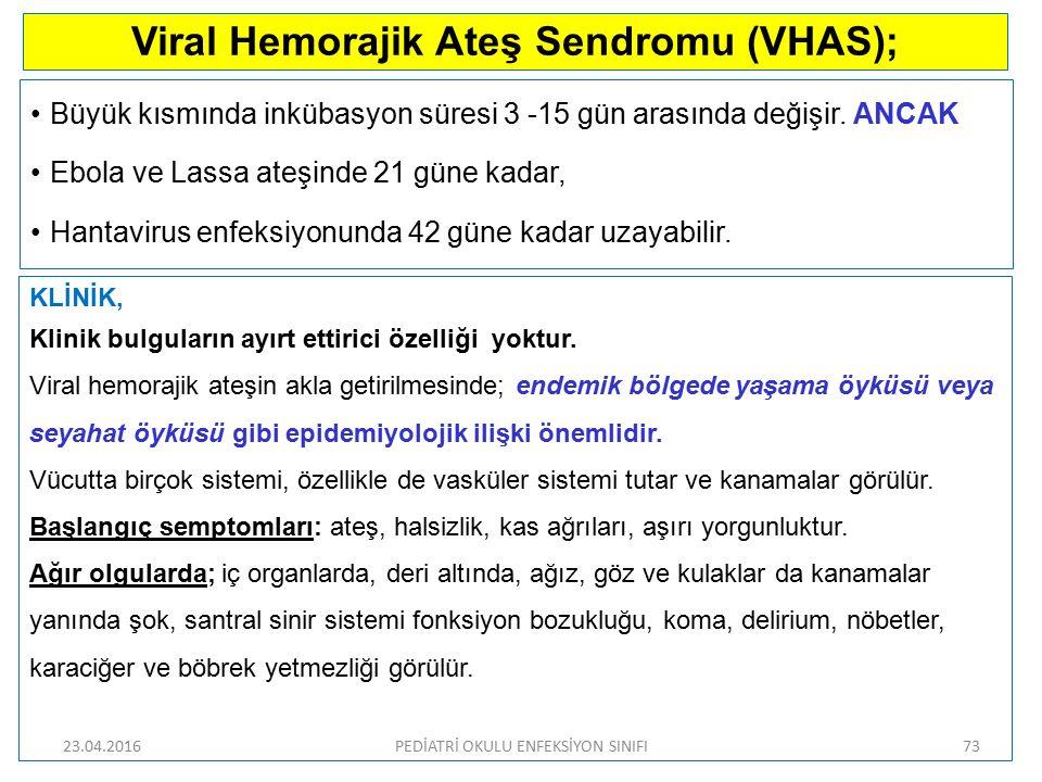 Viral Hemorajik Ateş Sendromu (VHAS);