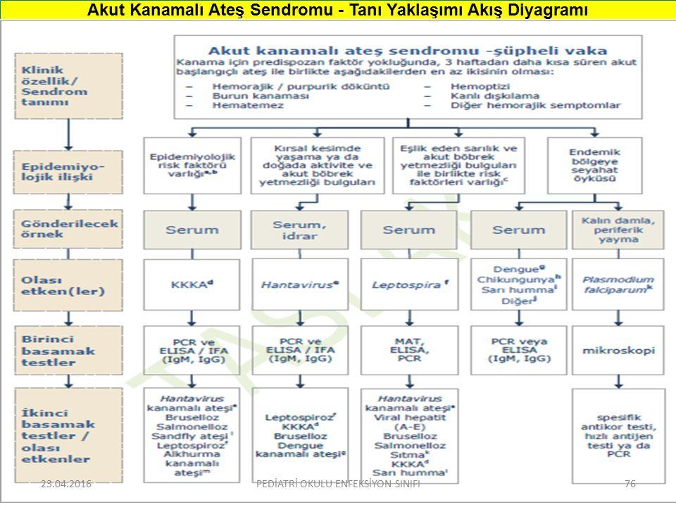 Akut Kanamalı Ateş Sendromu - Tanı Yaklaşımı Akış Diyagramı