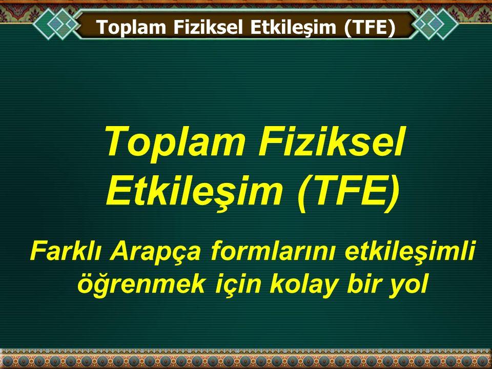 Toplam Fiziksel Etkileşim (TFE)