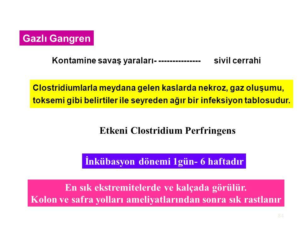 Etkeni Clostridium Perfringens