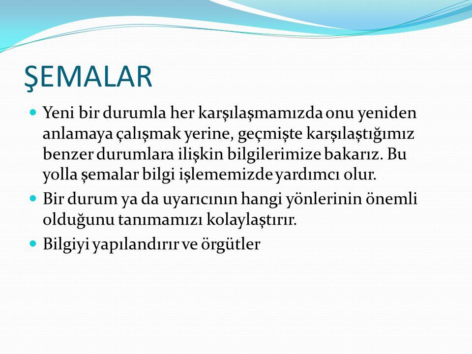 ŞEMALAR