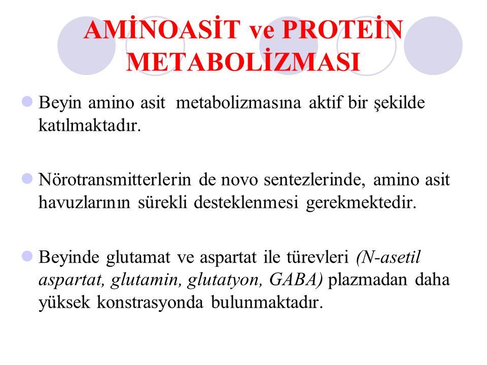 metabol steroid