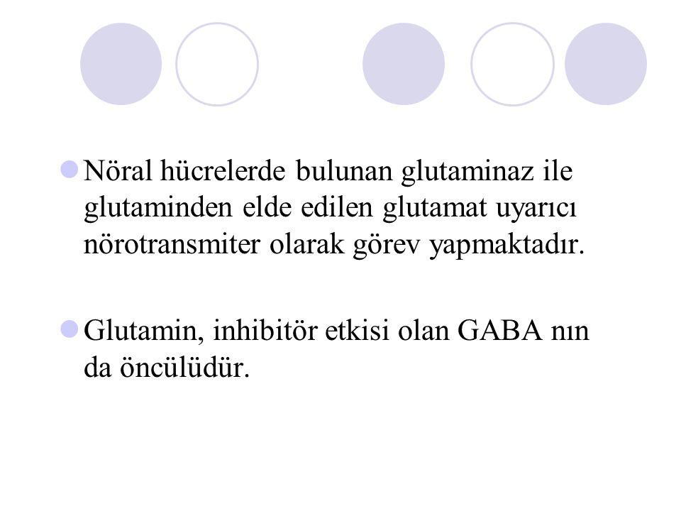Nöral hücrelerde bulunan glutaminaz ile glutaminden elde edilen glutamat uyarıcı nörotransmiter olarak görev yapmaktadır.