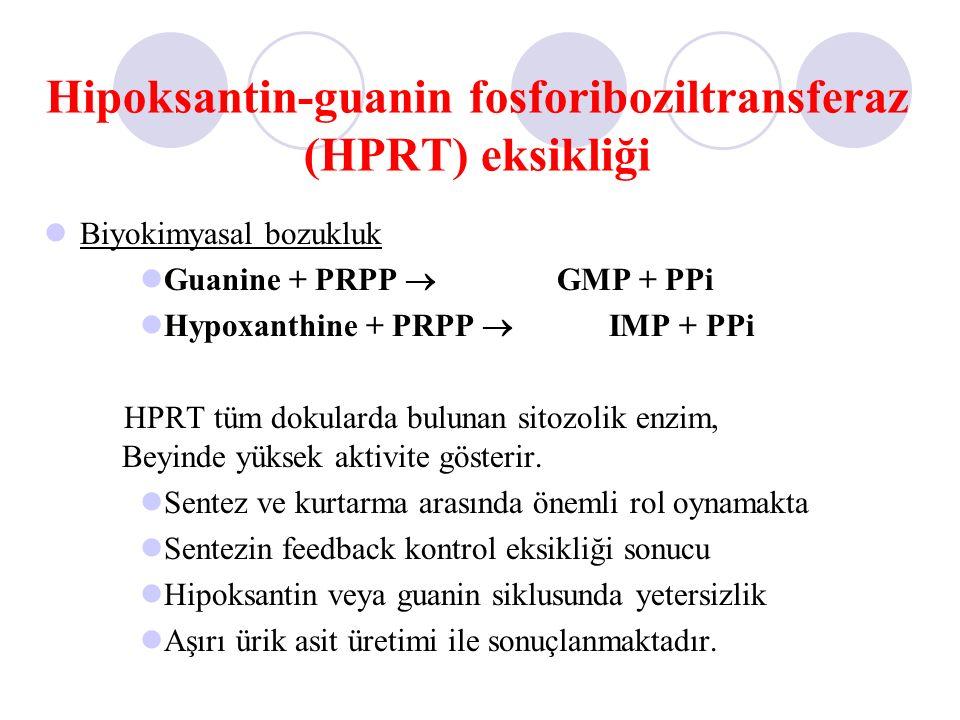Hipoksantin-guanin fosforiboziltransferaz (HPRT) eksikliği