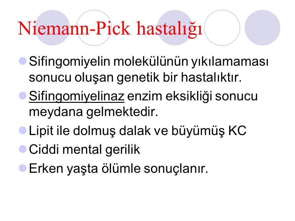 Niemann-Pick hastalığı