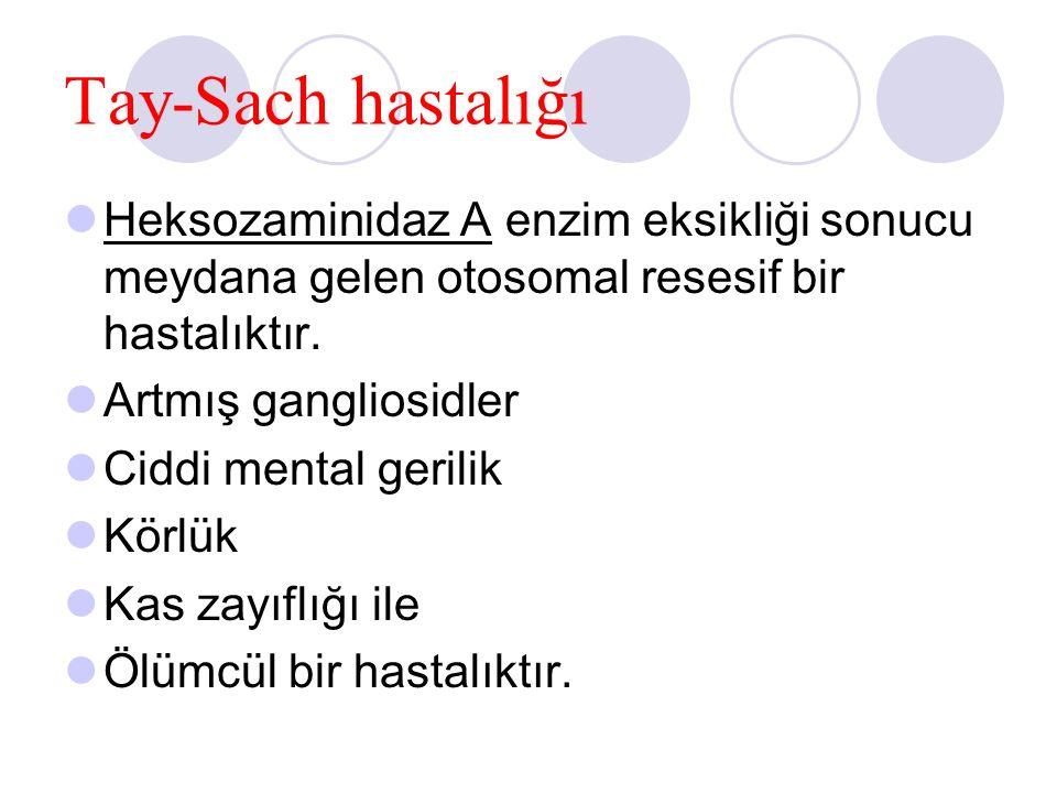 Tay-Sach hastalığı Heksozaminidaz A enzim eksikliği sonucu meydana gelen otosomal resesif bir hastalıktır.
