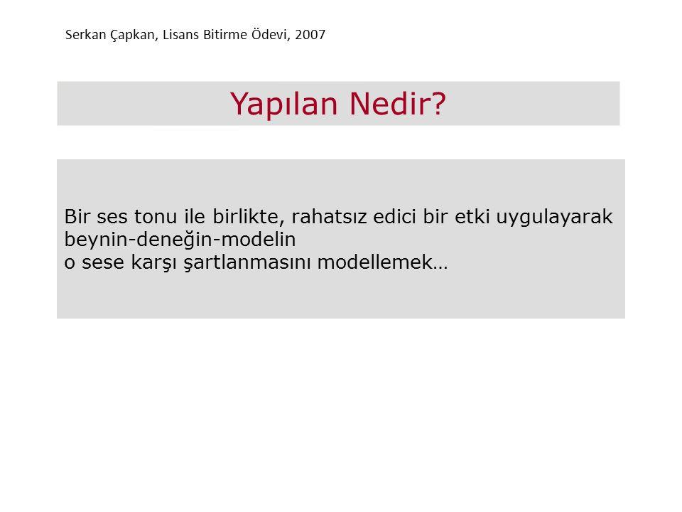 Serkan Çapkan, Lisans Bitirme Ödevi, 2007