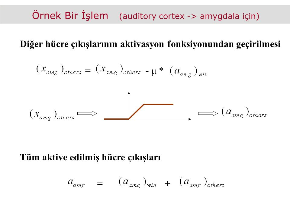 Örnek Bir İşlem (auditory cortex -> amygdala için)