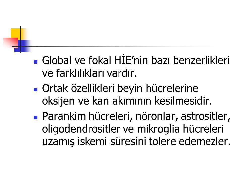 Global ve fokal HİE'nin bazı benzerlikleri ve farklılıkları vardır.