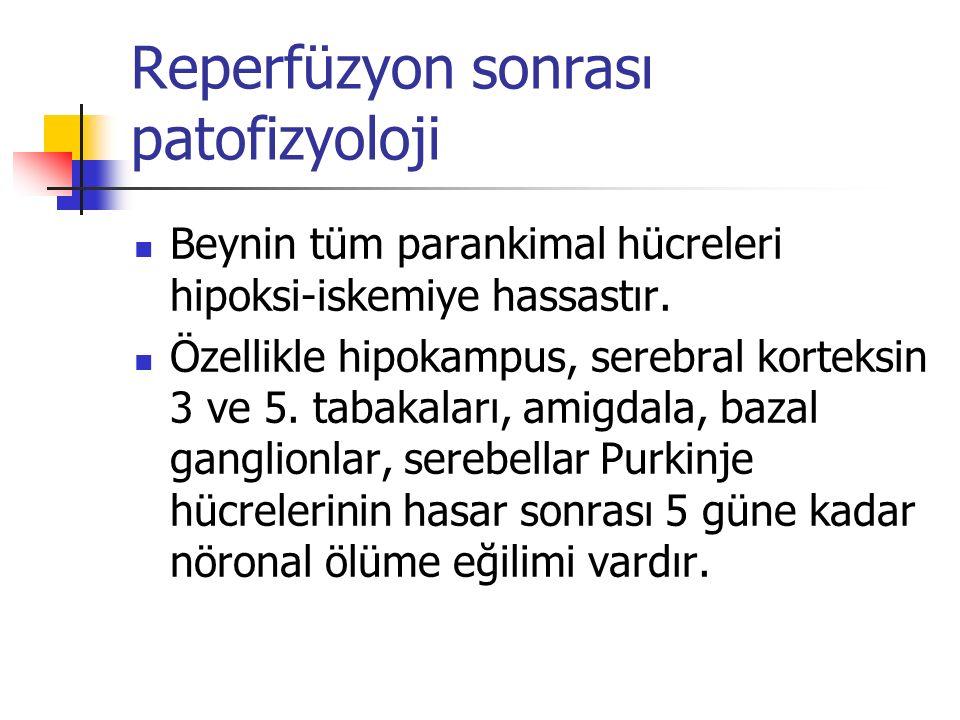 Reperfüzyon sonrası patofizyoloji