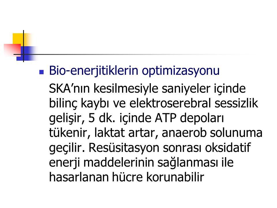 Bio-enerjitiklerin optimizasyonu