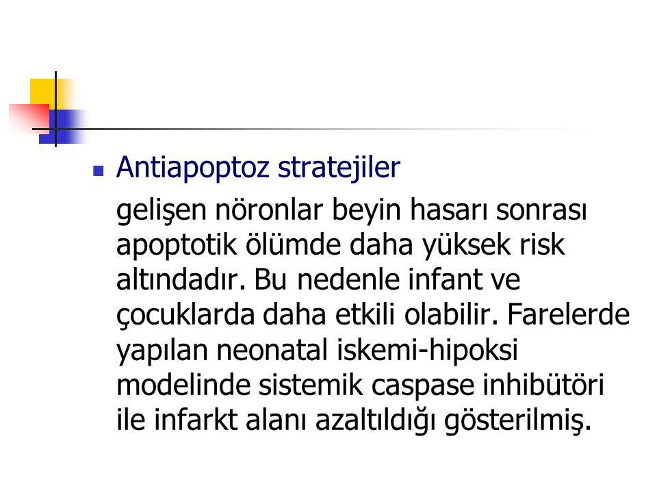 Antiapoptoz stratejiler